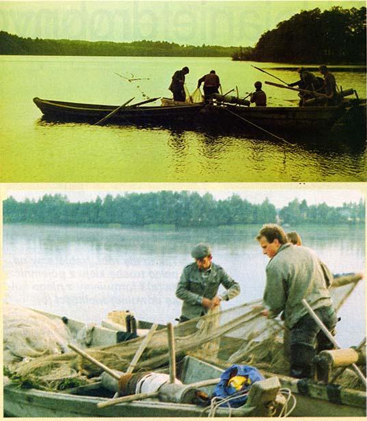 Odłowy ryb dokonywane przez rybaków