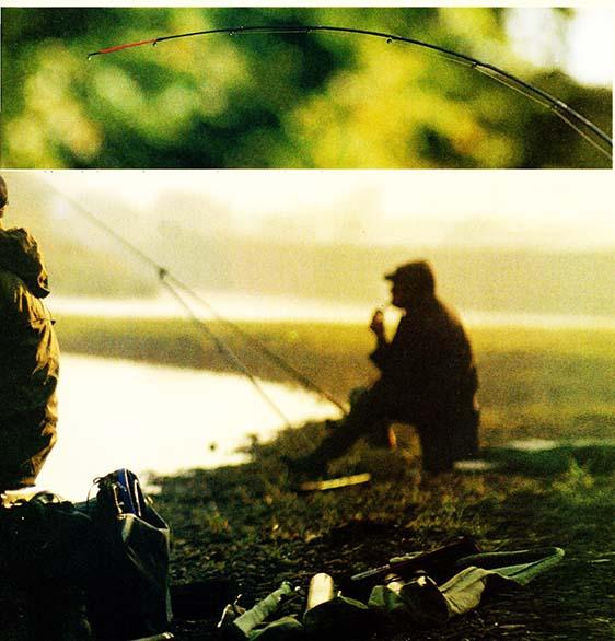 Technika łowienia ryb – drgająca szczytówka