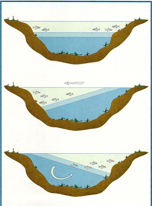 Wiatr a brania ryb