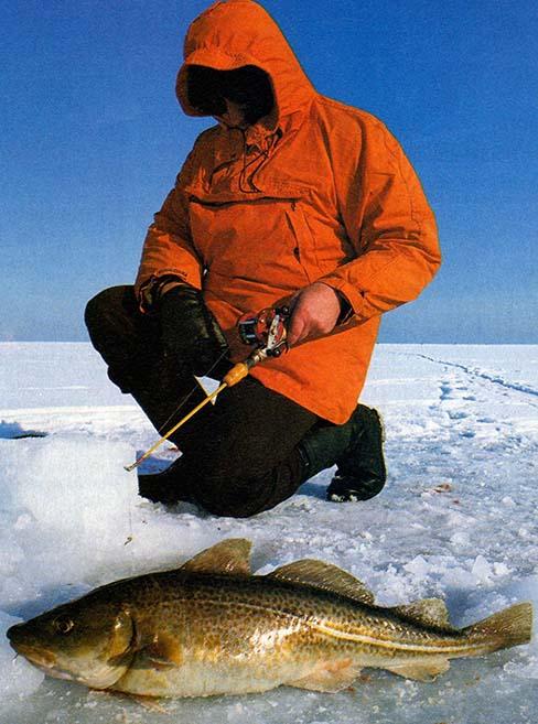 Zimowe łowienie ryb